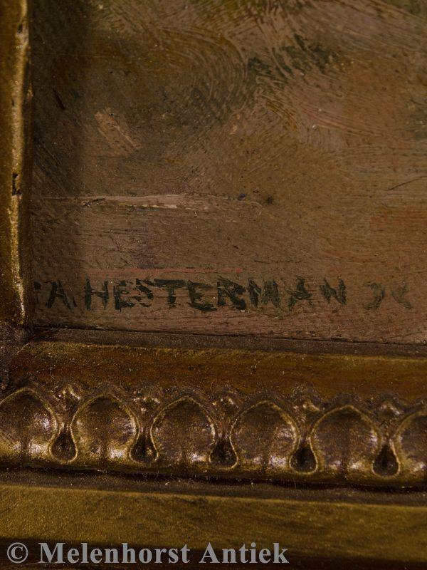 J.A. Hesterman - Dame in de schaduw